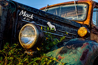 Mack A 30 in the Weeds